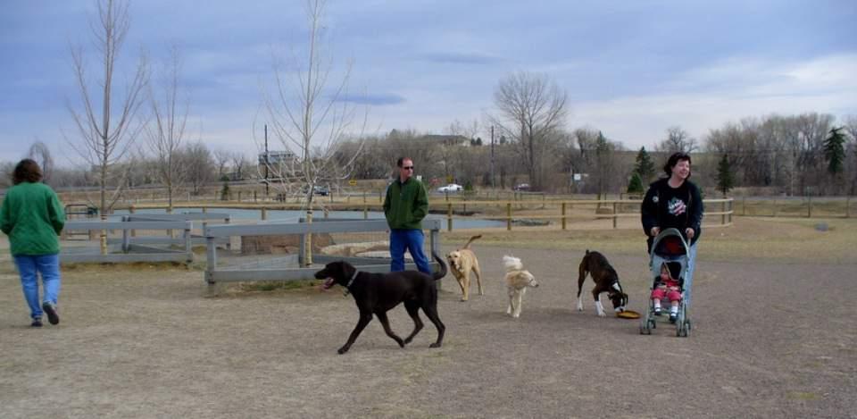 Highlands Ranch Dog Parks